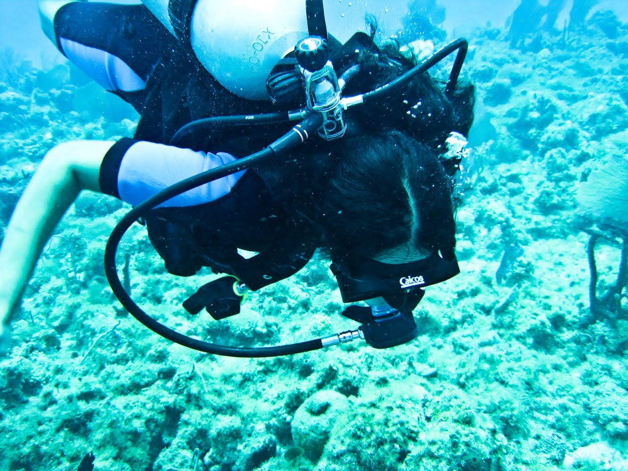 Diving at Couples San Souci
